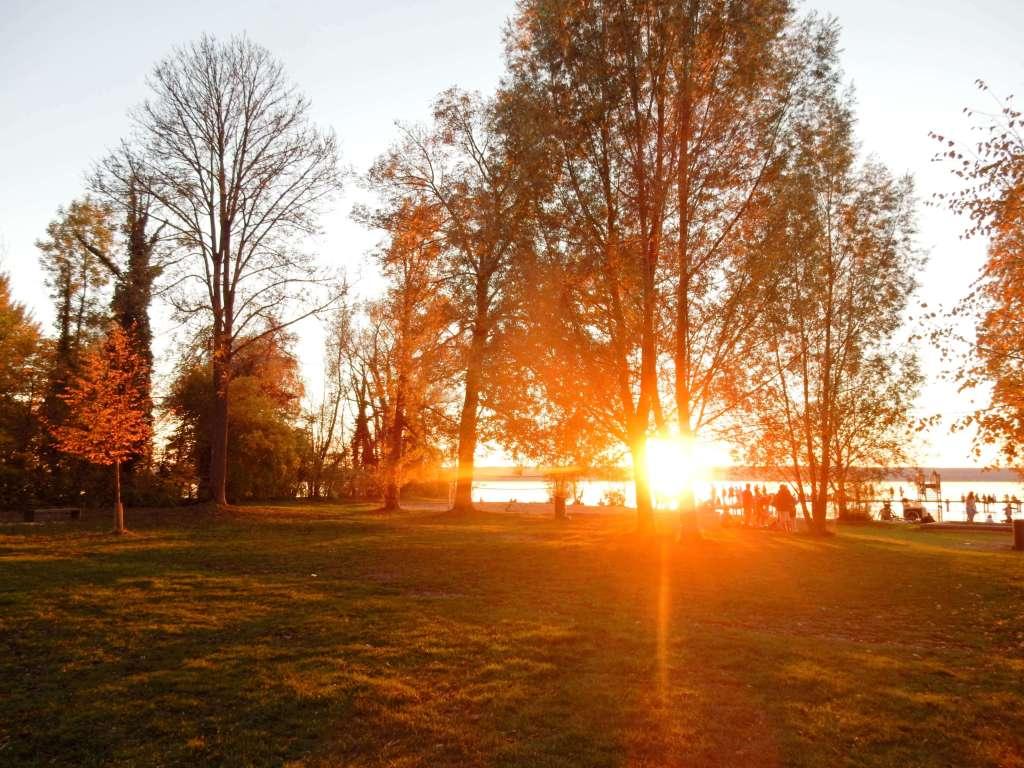 Sunset_golden_hour