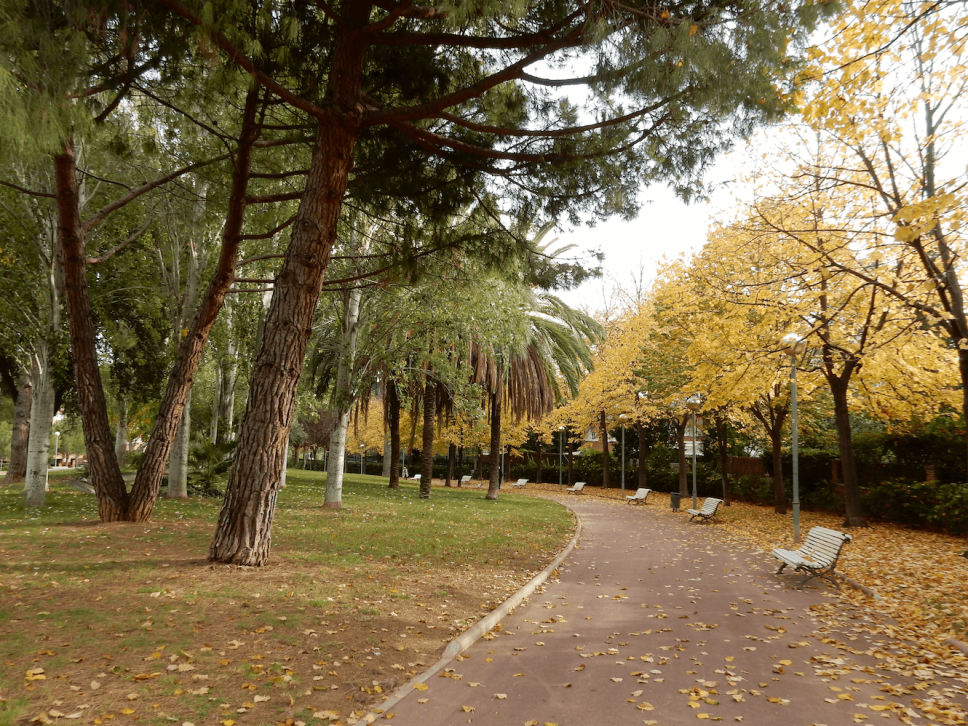 barcelona_autumn_fall